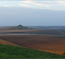 Between horse and hill by MigBardsley