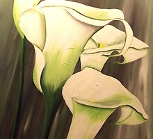 White Calla Lily by jansimpressions