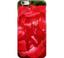 Big Red Rose Flower Art Print gifts Roses Garden iPhone Case/Skin