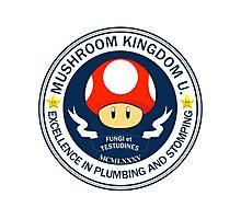 Mushroom Kingdom University Photographic Print