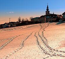 Beautiful village in winter wonderland | landscape photography by Patrick Jobst