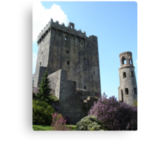 Blarney Castle 2 Canvas Print