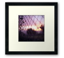 Wire fence and foliage on summer evening  in Spain square medium format film analogue photo Framed Print