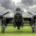 Just Jane - Stormy Skies - HDR by Colin J Williams Photography