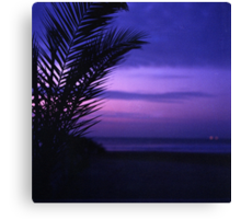 Palm tree on beach Ibiza silhouette against dusk sunset sky square medium format film analogue photos Canvas Print