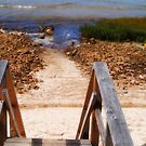Stairs to the Beach by Linda  Makiej
