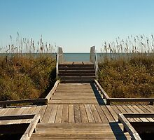 Myrtle Beach State Park by Michael August