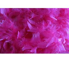 Pretty Pink Feathers Photographic Print