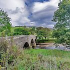 Swaledale Packhorse Bridge by Trevor Kersley