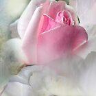 Gabriel's Pink by Anivad - Davina Nicholas