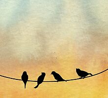 Birds on a wire by Warp9