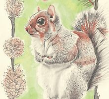 Autumn Squirrel by Troglodyte