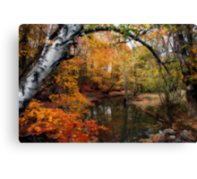 In Dreams Of Fall Canvas Print
