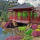 Japanese Bridge at Emu Valley by TonyCrehan