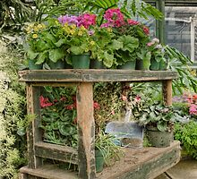 The Garden's Bench by Marilyn Cornwell