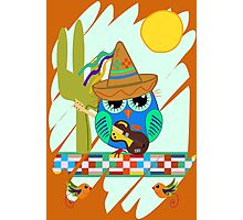Cute Sombrero Owl with a Guitar Photographic Print