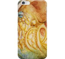 Devil's Lair II iPhone Case/Skin