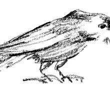 The Crow by BorisBurakov