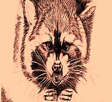 RACCOON by KEITH  R. WILLIAMS