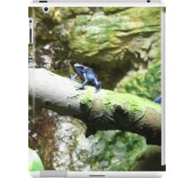 Azureus Dart Frog on branch 2 iPad Case/Skin