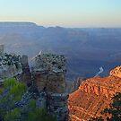 Canyon at Dusk  by Cody  VanDyke