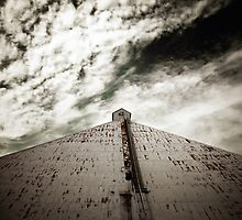 The Climb by Trish Mistric