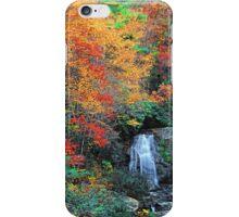 MEIGS FALLS,AUTUMN iPhone Case/Skin