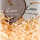 couple of wooden love hearts by morrbyte