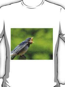Singing for his supper T-Shirt