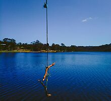 Rope swing on a lake by wellfinished