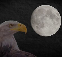 Bald Eagle With  Full Moon  by chris2766