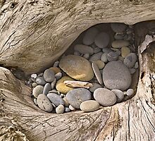 Driftwood Pebble Pocket by Peter Sucy