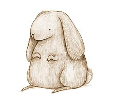 Plump Bunny by Sophie Corrigan