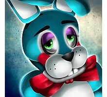 The New Bunny Photographic Print