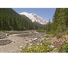 Mount Rainier from White River Campground Trail Photographic Print