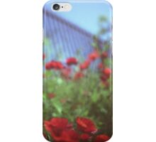 Poppies growing up fence in hot summer square Hasselblad medium format film analog photograph iPhone Case/Skin
