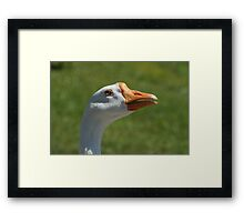 AFLACCCC!!!!!! Framed Print