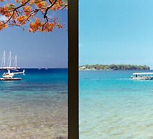 Diptych: Vanuatu Harbor by wellfinished