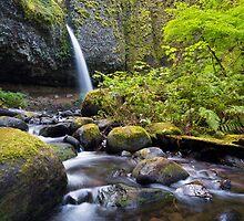 Waterfall by Dmitry Shuster