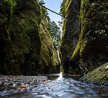 Oneonta Gorge by Dmitry Shuster