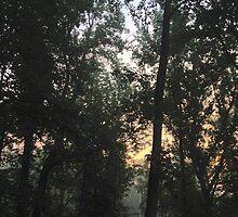 pastel beginnings by vyntacular