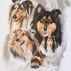 Collie /Ghost by BarbBarcikKeith