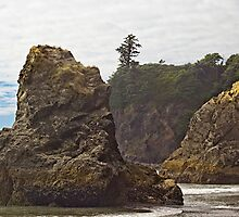 Granite Stacks Olympic National Park by Peter Sucy