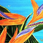 Bird of Paradise III by WhiteDove Studio kj gordon