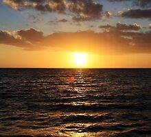 Naples, Florida by Kimberly  Daigle