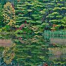 Autumn reflection 1 by Carolyn Clark