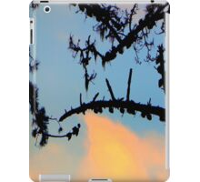 Things Are Looking Up iPad Case/Skin