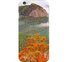 LOOKING GLASS ROCK iPhone Case/Skin