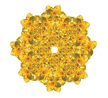 A Ring of Daffodils by brigitte-k