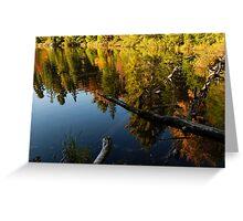 Mesmerizing Fall Reflections Greeting Card